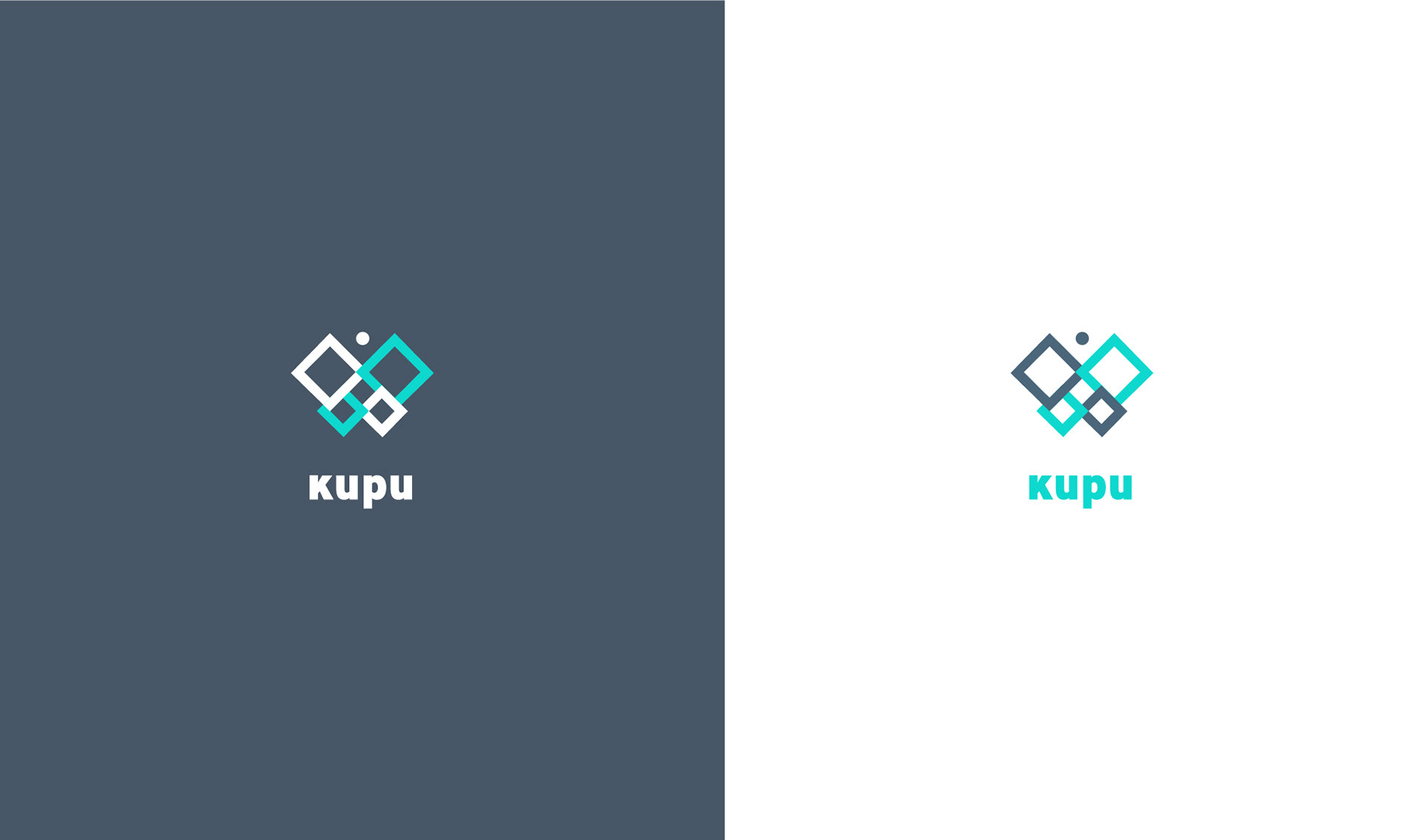 Kupu project 2