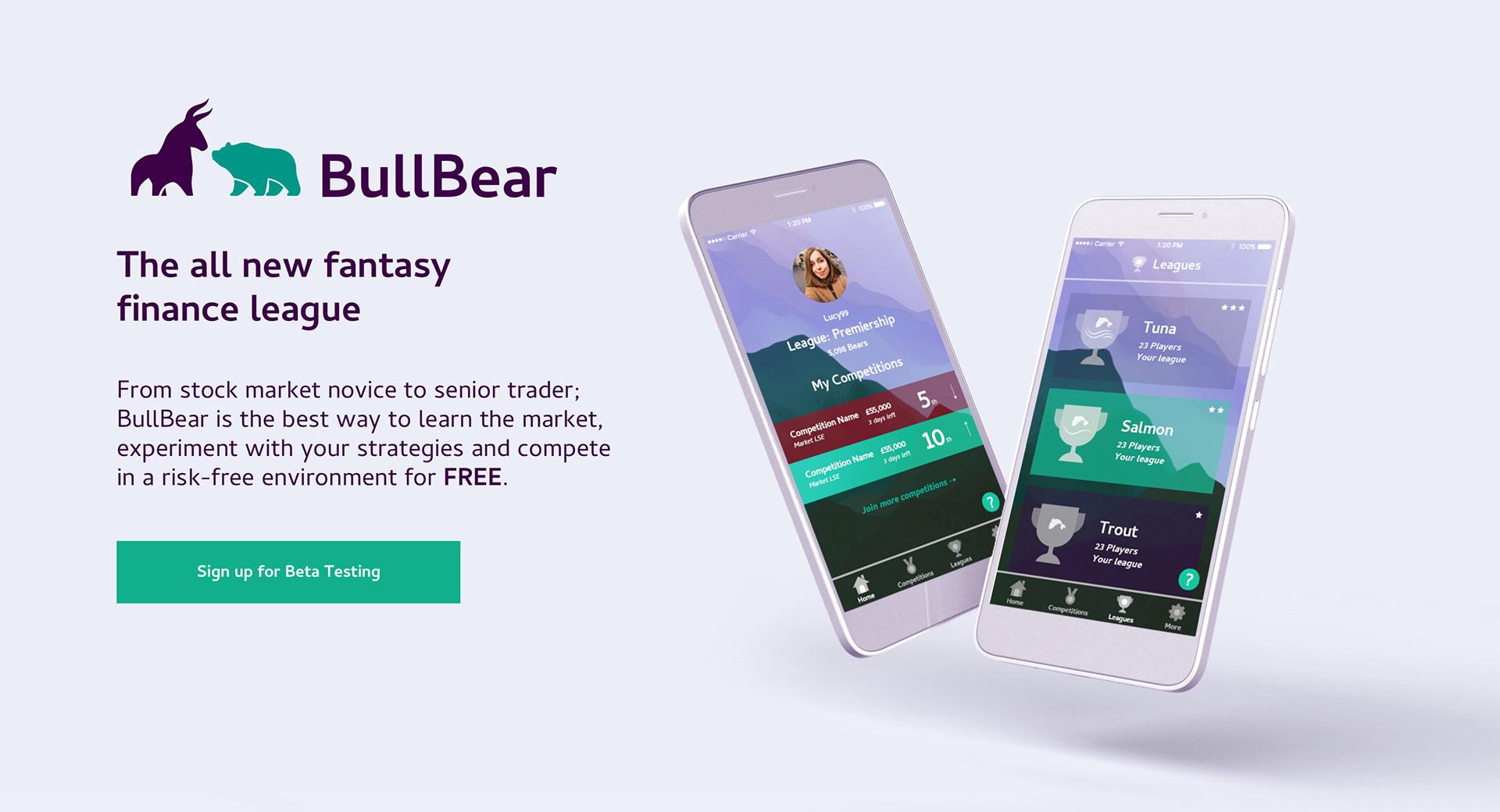 Bull Bear project 1