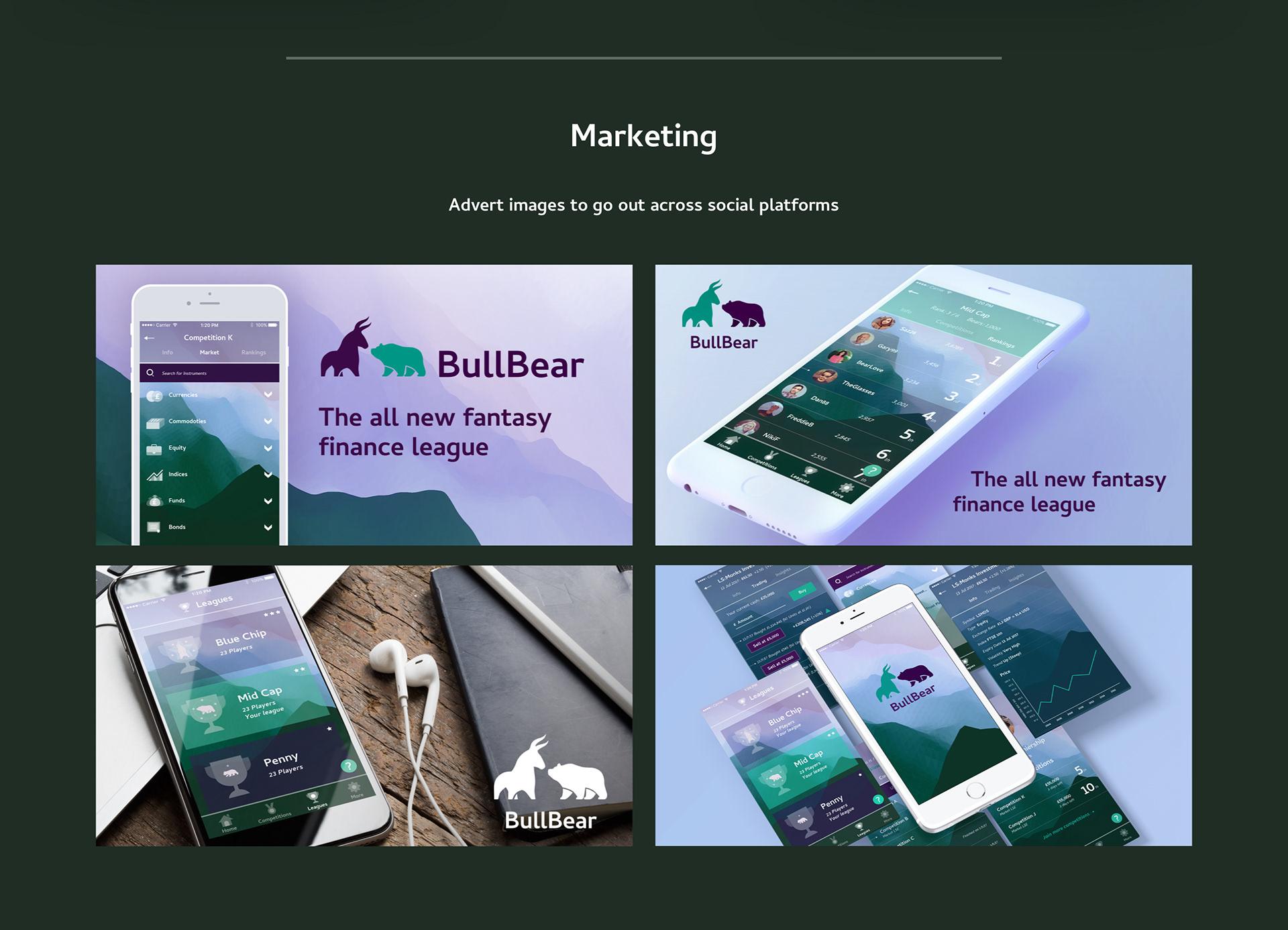 Bull Bear project 5